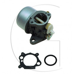 Carburateur adaptable BRIGGS & STRATTON modèle Quantum (Choke)