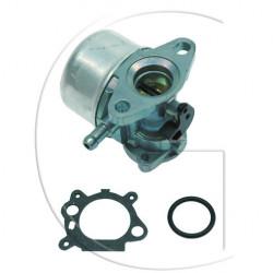 Carburateur adaptable BRIGGS & STRATTON modèle Quantum (primer)
