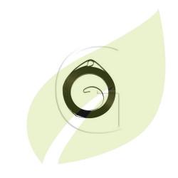 Ressort lanceur tondeuse GREEN MACHINE 3000 ,300290