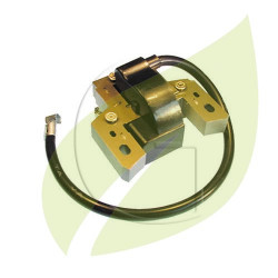 Bobine électronique BRIGGS & STRATTON 802574