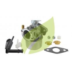 Carburateur BRIGGS & STRATTON 795069, 798653