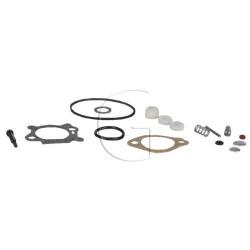 Kit de réparation pour carburateur BRIGGS & STRATTON 5 HP Quantum