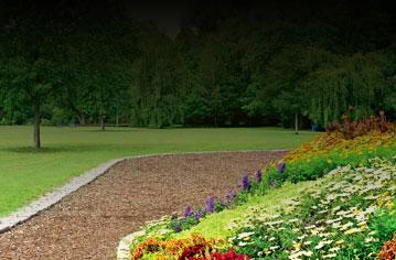 Création et entretien de jardin et espaces verts