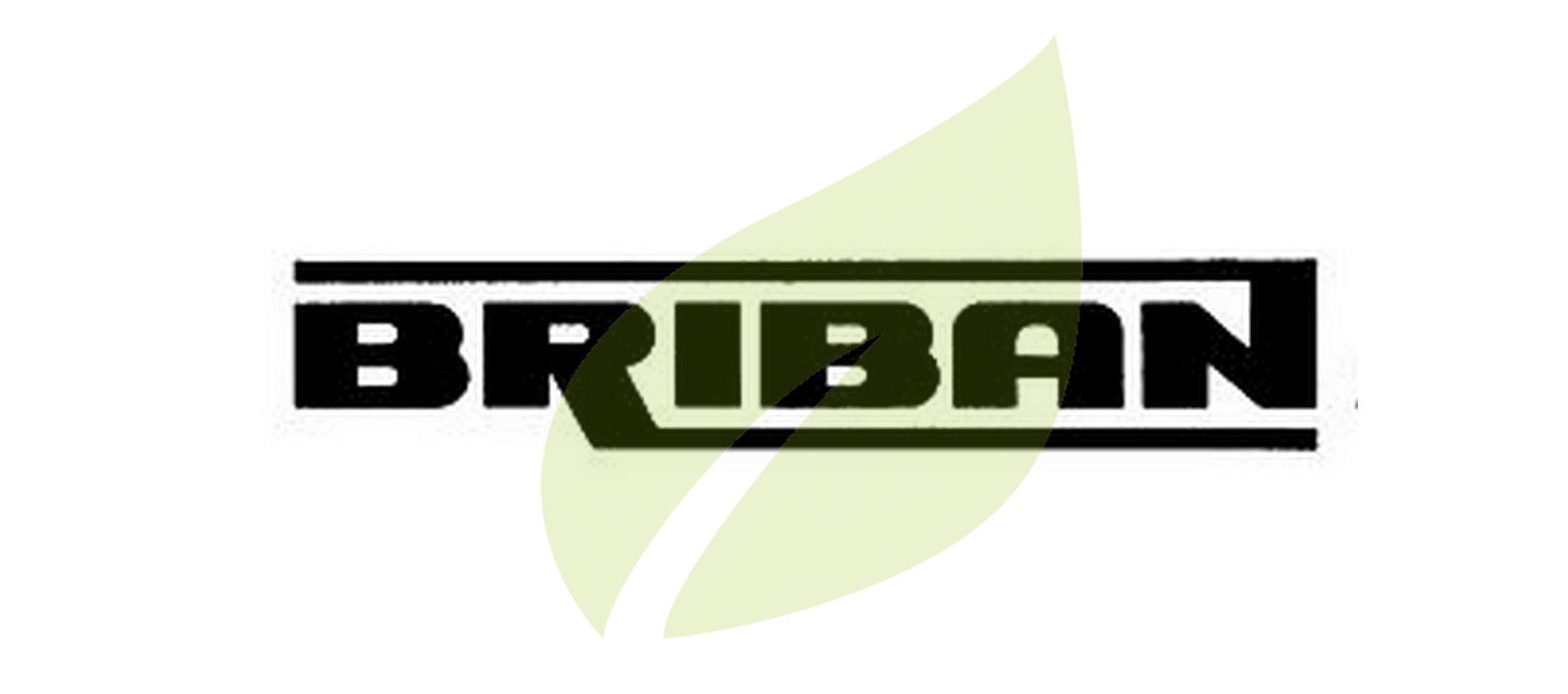 BRIBAN